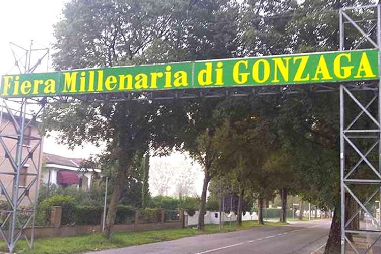 Fiera Millenaria di Gonzaga 2015
