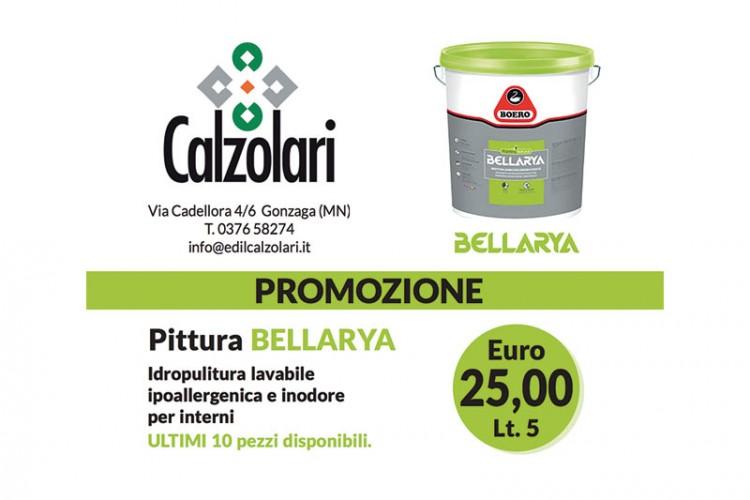 Promozione estiva: Pittura Bellarya a €25!