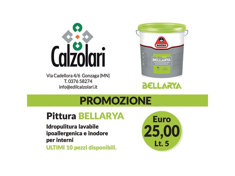 Promozione estiva pittura bellarya a 25 edil calzolari for Calzolari arredo urbano